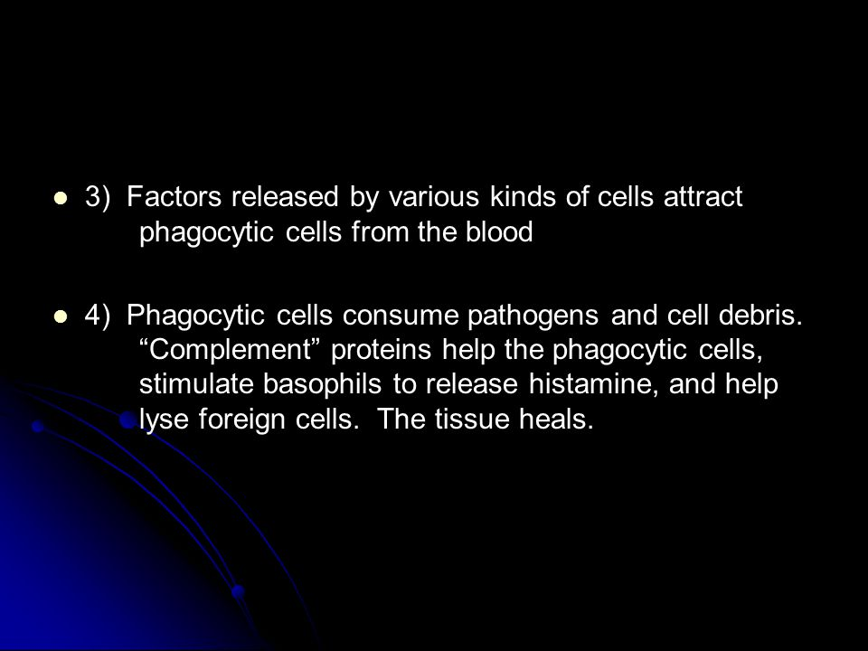 3) Factors released by various kinds of cells attract