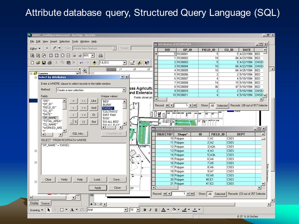Attribute database query, Structured Query Language (SQL)