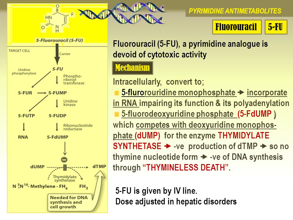 5 fluorouracil mechanism of action pdf