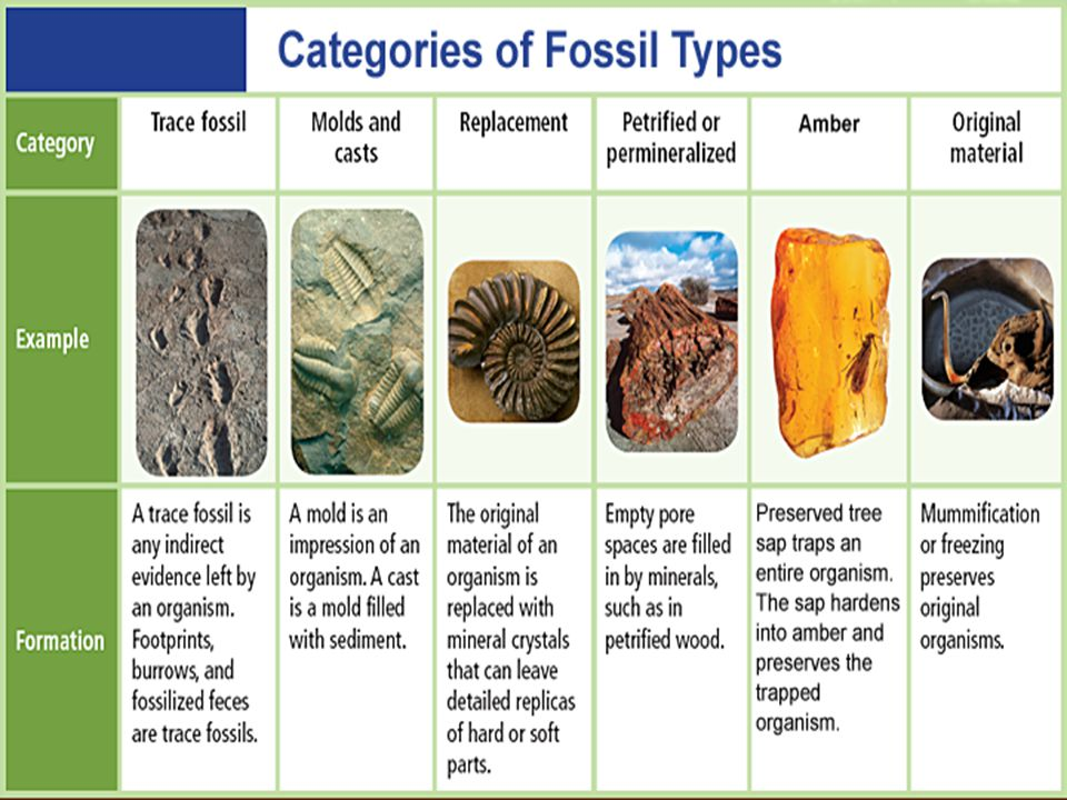 Types of fossil dating