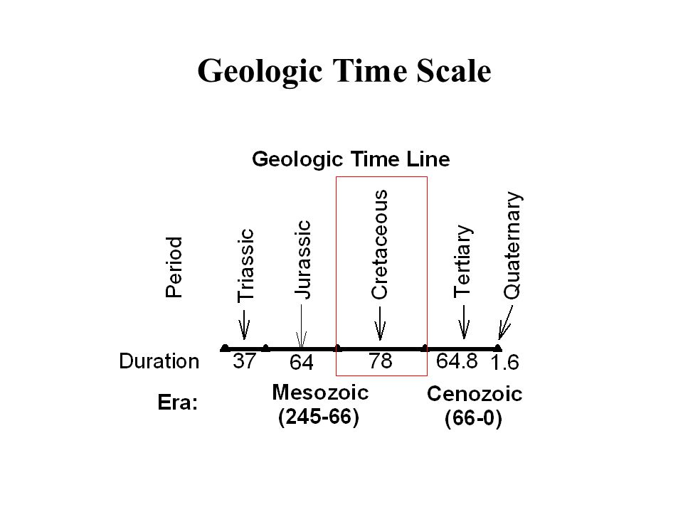 an overview of the jurassic period in the mesozoic era England's southwestern shore is renowned for the nearly continuous 185-million-year record of earth's history exposed in its sensational seacliffs, which record one of the world's best stratigraphic sequences from the mesozoic era.
