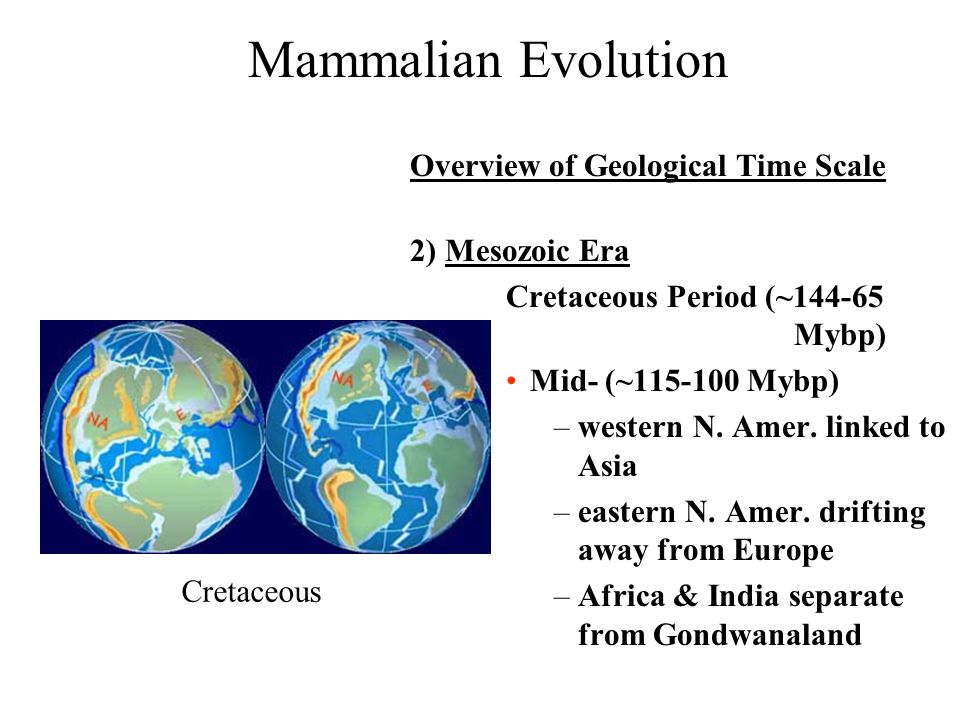 the overview of evolution Microevolution (evolution on a small-scale) refers to the changes in allele frequencies within a single populationallele frequencies in a population may change due to four fundamental forces of evolution: natural selection, genetic.
