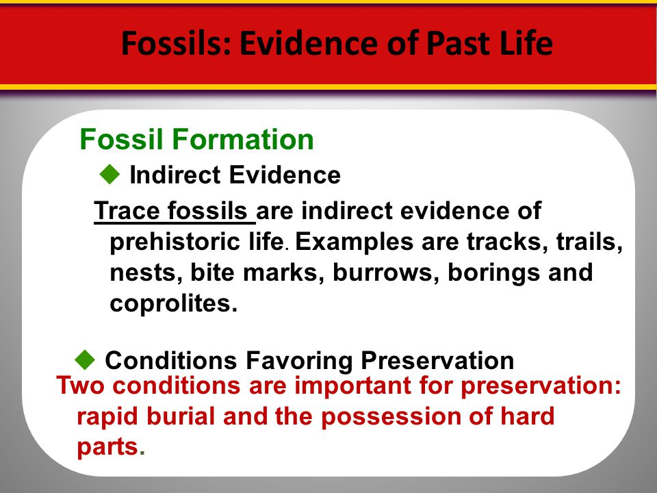 What is direct fossil dating method