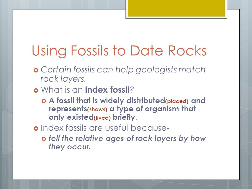 How are index fossils used to date rock layers in Perth