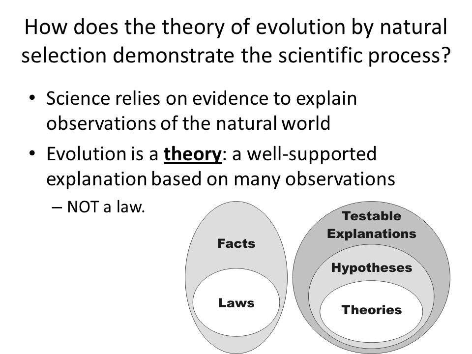 Methodology: the natural approach
