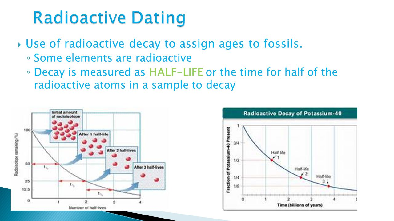 How to Determine the age of a fossil using carbon Math WonderHowTo