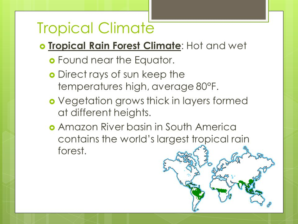 Tropical Climate Tropical Rain Forest Climate: Hot and wet