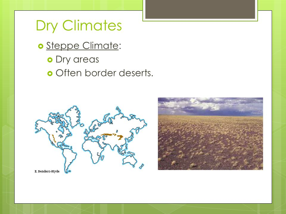 Dry Climates Steppe Climate: Dry areas Often border deserts.