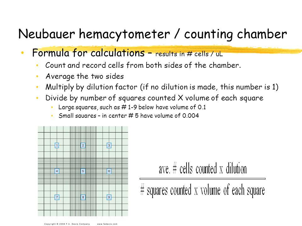 Neubauer hemacytometer / counting chamber
