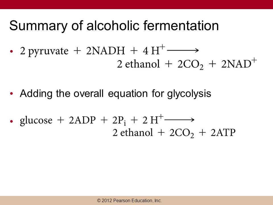 alcoholism summary 12