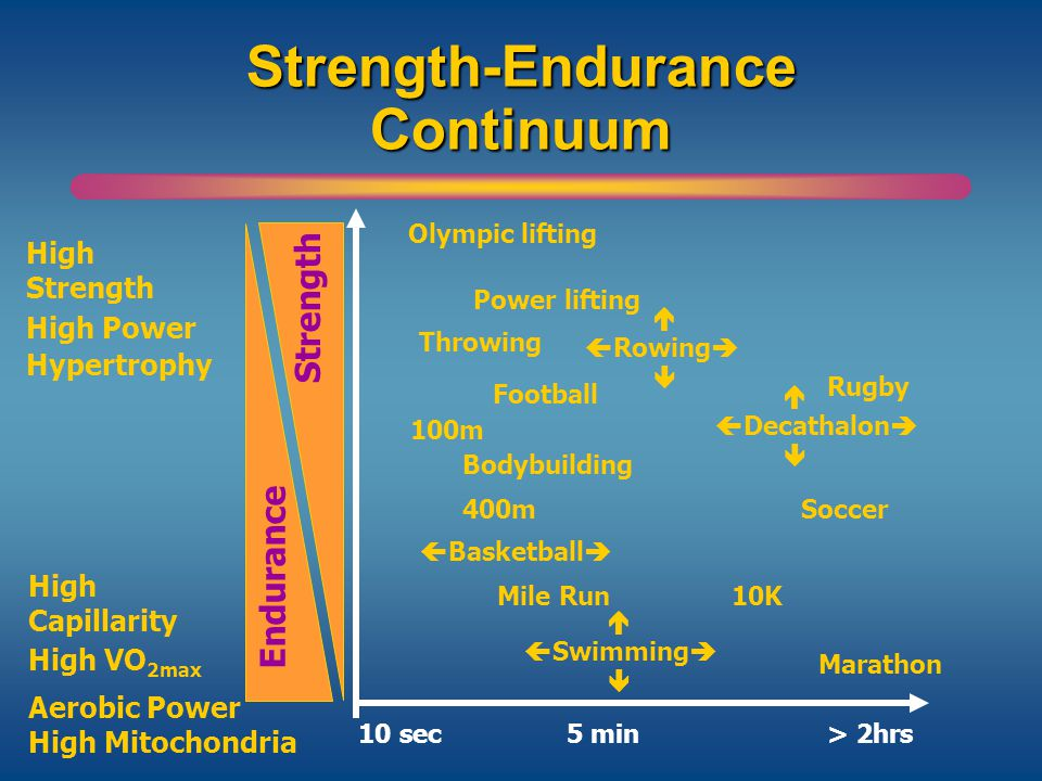 Strength Endurance Continuum Fartlek Training Work Rest Ratio