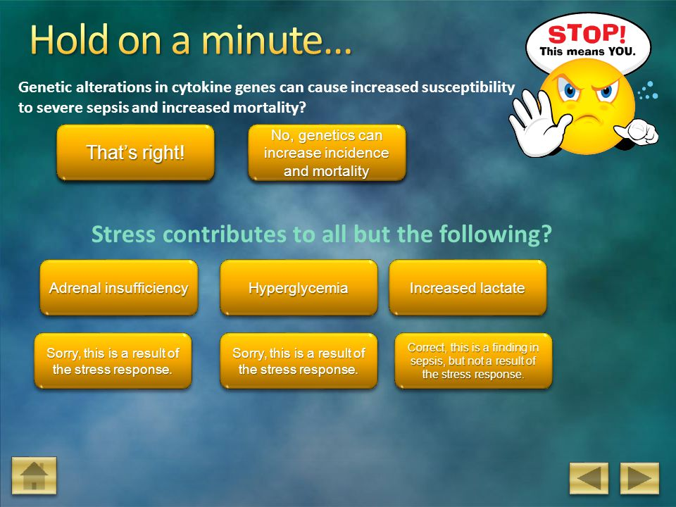 Hold on a minute… Stress contributes to all but the following True
