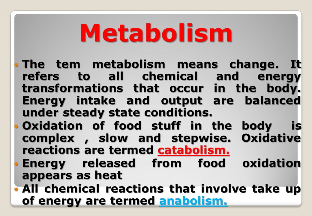 energy balance amp metabolism ppt video online download