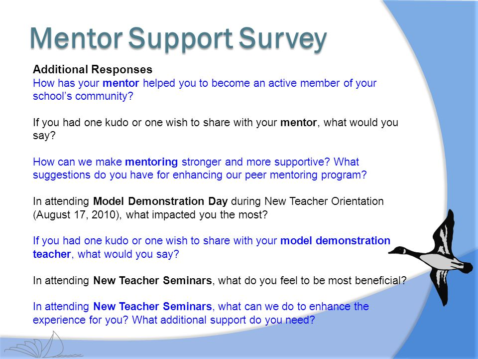 Mentor Support Survey Additional Responses