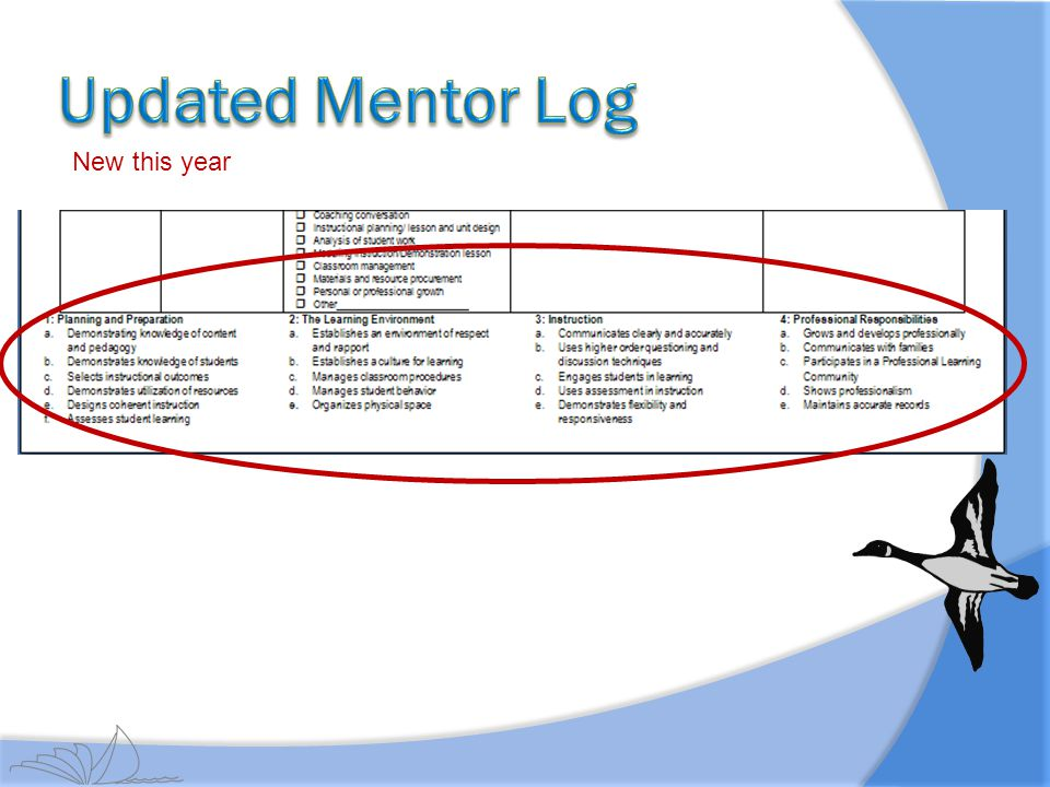 Updated Mentor Log New this year