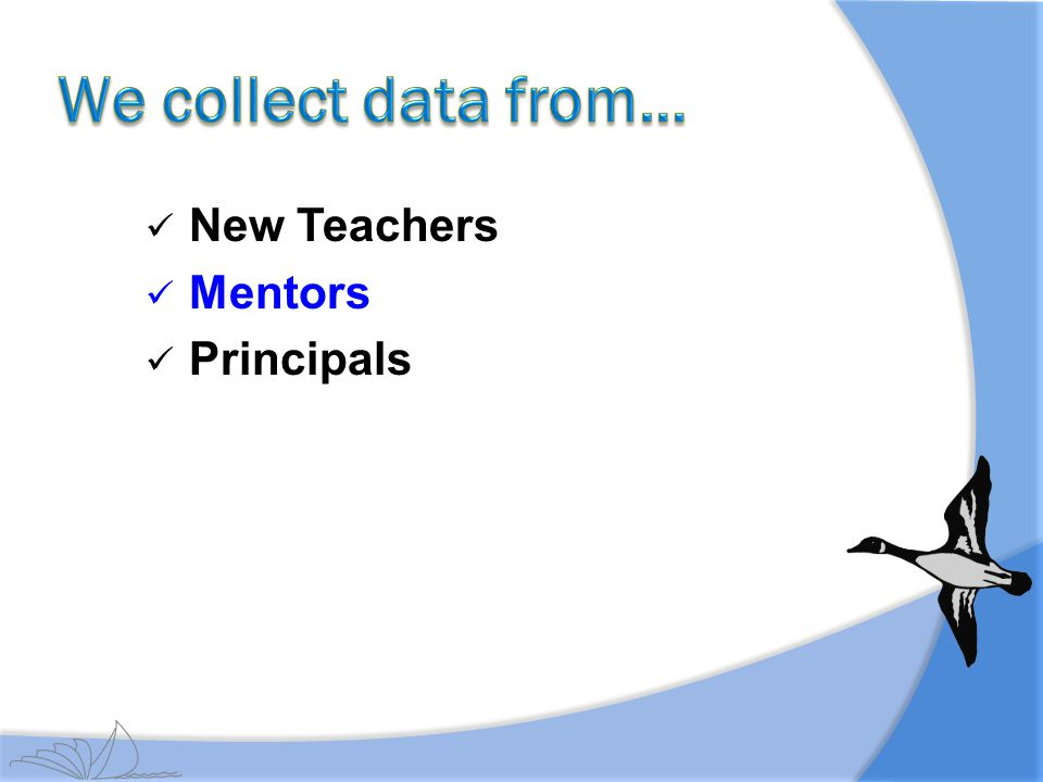 We collect data from… New Teachers Mentors Principals