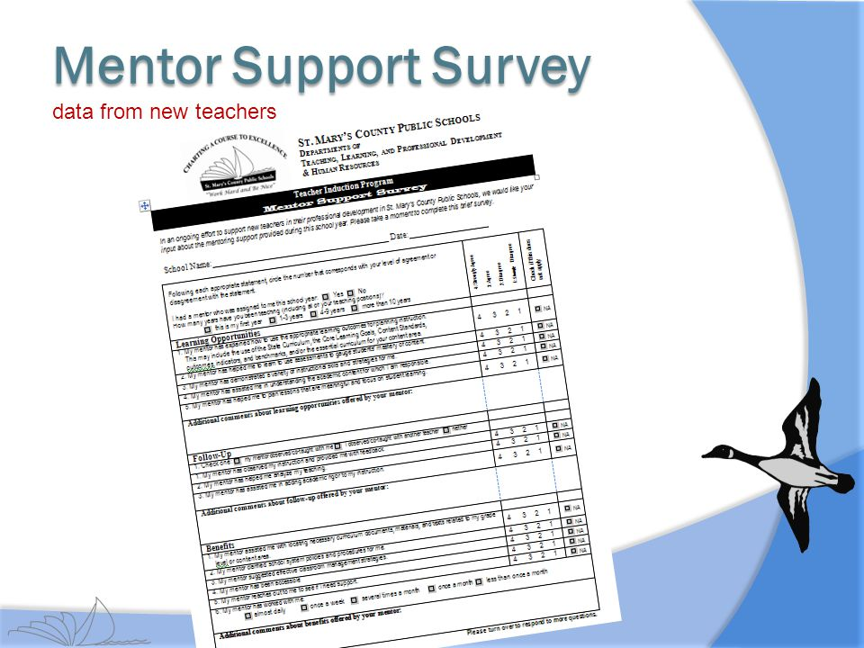 Mentor Support Survey data from new teachers