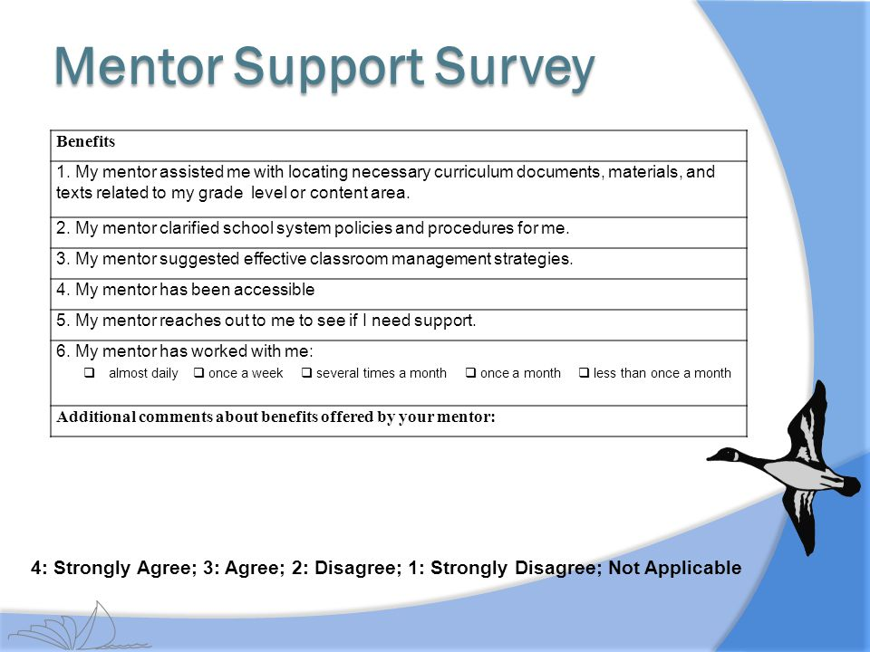 Mentor Support Survey Benefits.