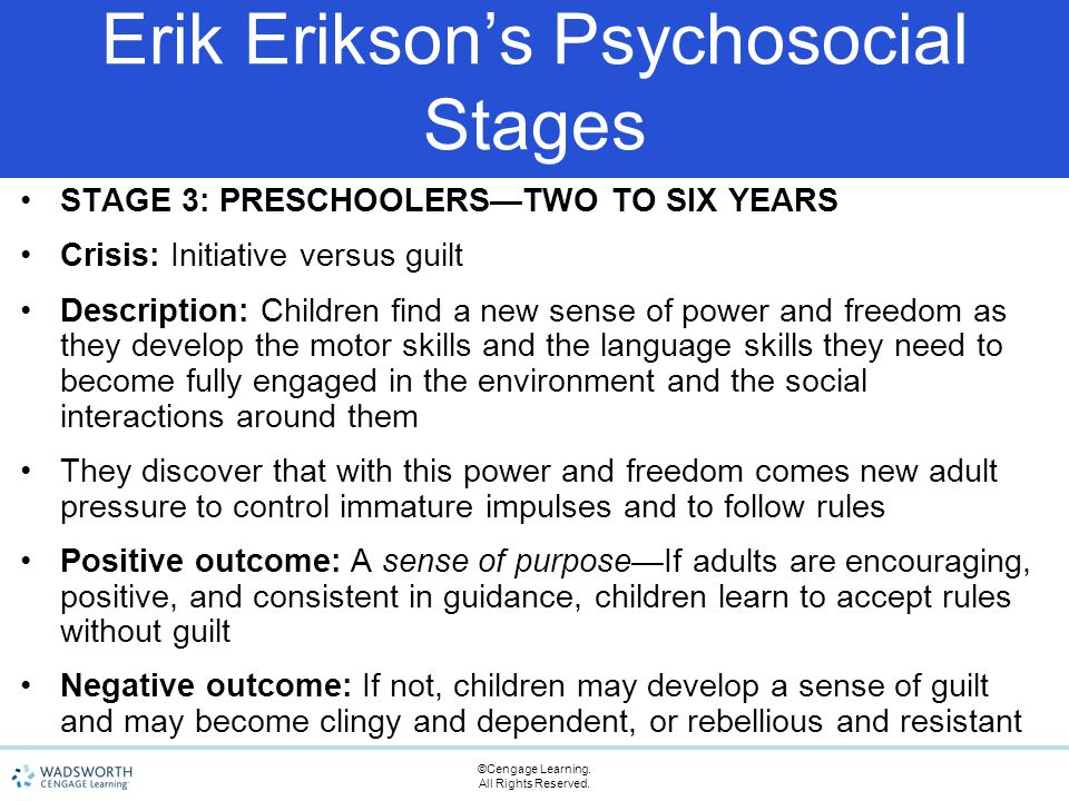 Erikson's Theory of Psychosocial Development Essay Sample