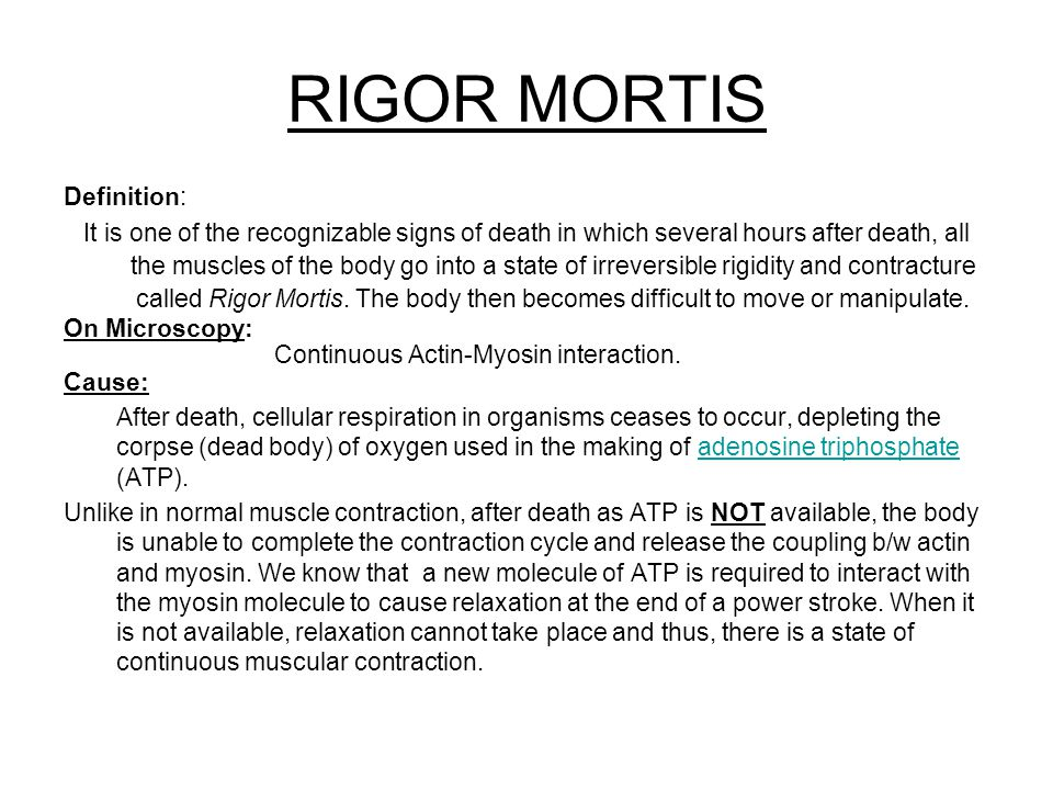 cellular respiration and rigor mortis essay Rigor mortis, the stiffening of a body several hours after death, arises from a combination of two of the oldest definitions of death – cessation of the heartbeat and cessation of breathing once either of these essential functions stops, the cells of the body lose their oxygen supply and can no longer perform aerobic respiration.