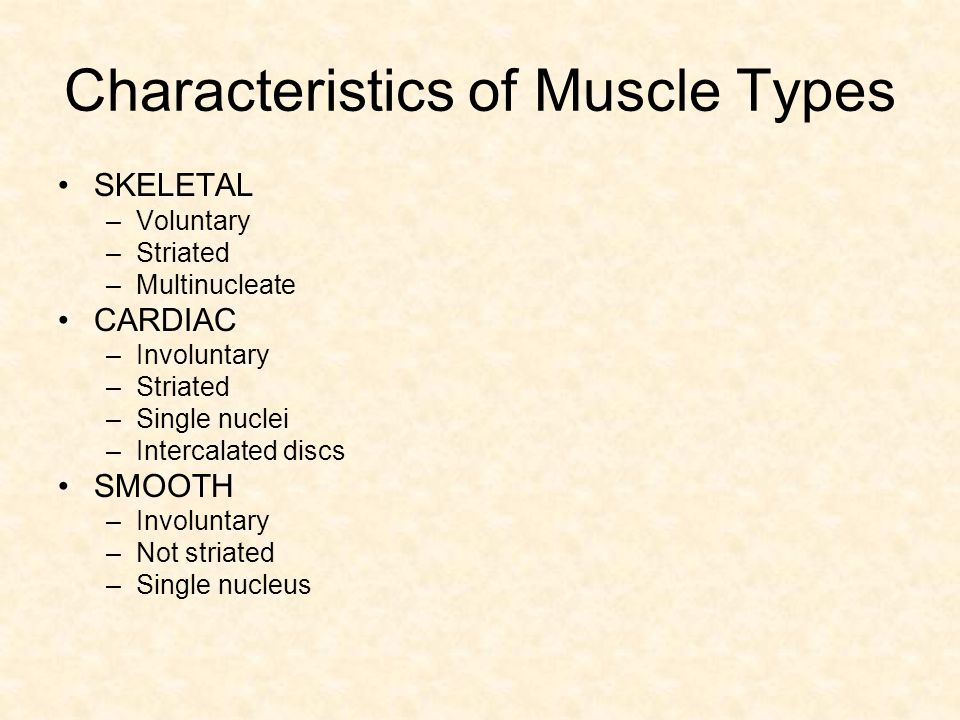 Characteristics of Muscle Types