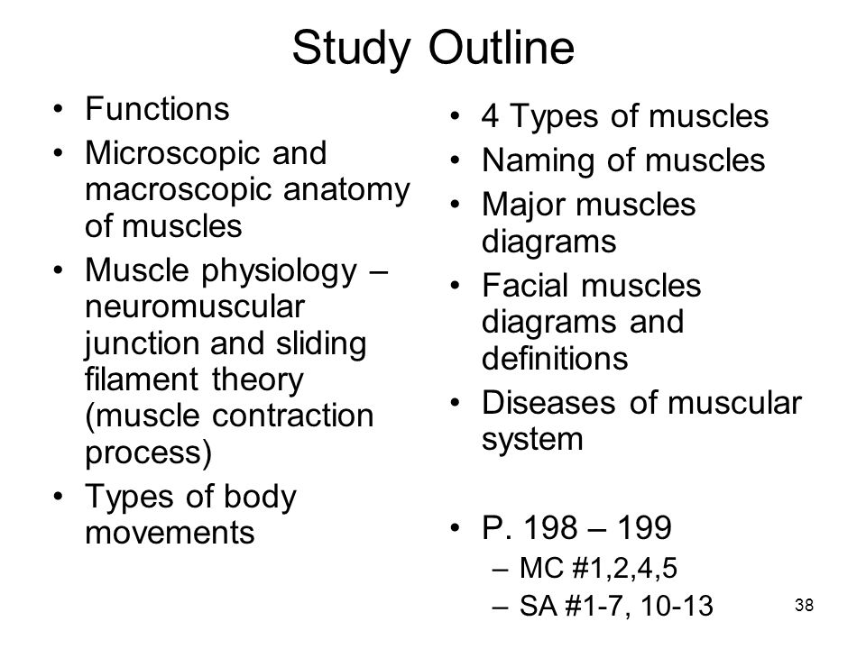 a study on the types of muscle in the body Study: experimental blood  muscle mom squat-lifts three times her body weight to win world championships  send msn feedback we appreciate your input how can.