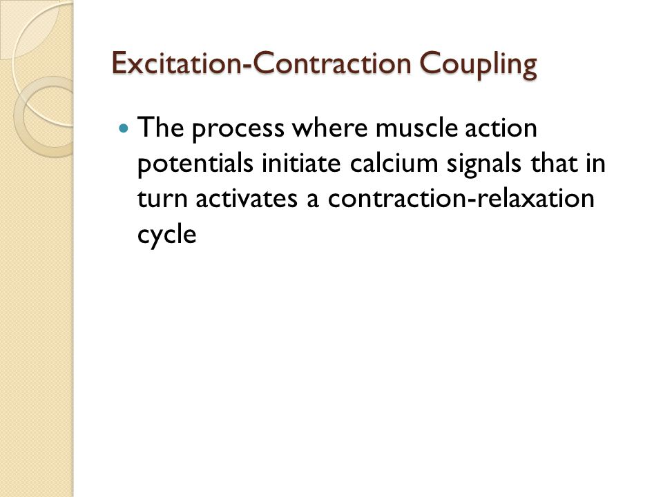 excitation contraction coupling process essay Lab #9: muscle physiology background  and triggers the excitation-contraction coupling process (release of ca2+ from the sarcoplasmic reticulum,.
