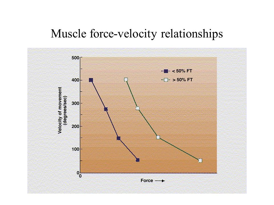 power law relationship between force and speed