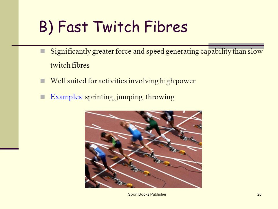B) Fast Twitch Fibres Significantly greater force and speed generating capability than slow twitch fibres.