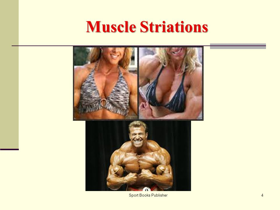 Muscle Striations Sport Books Publisher
