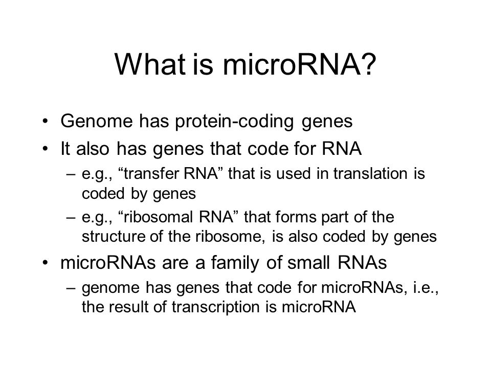 What is microRNA Genome has protein-coding genes