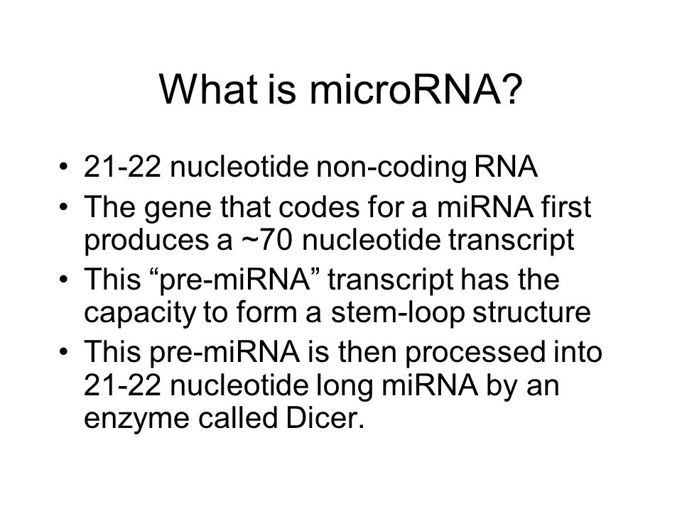 What is microRNA nucleotide non-coding RNA