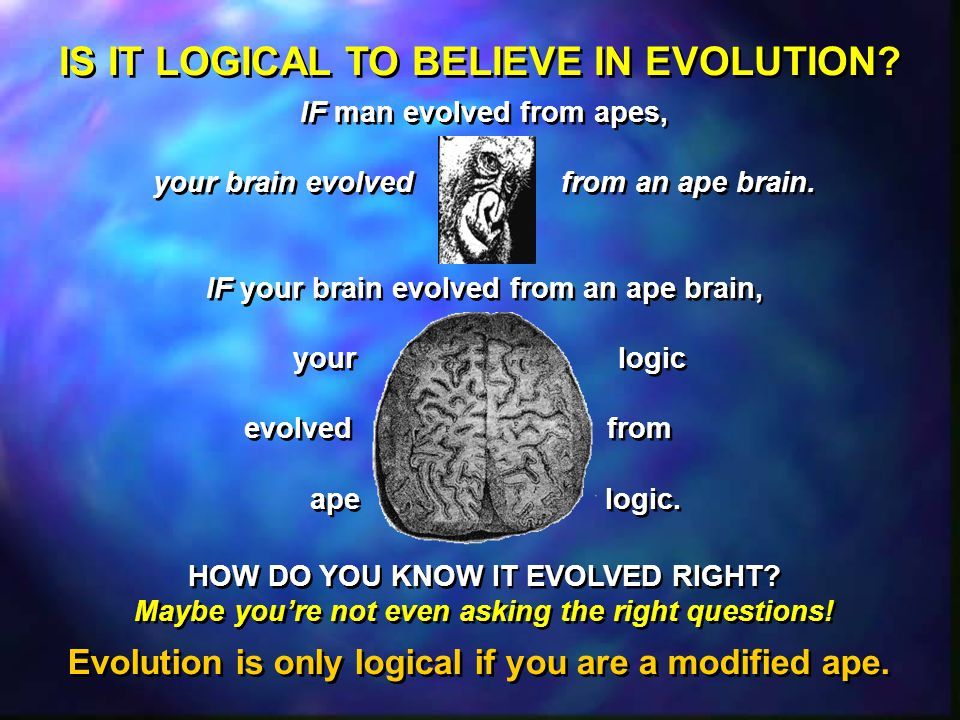 """is it logical to believe in 15 logical reasons to believe in the resurrection by mark hart many people will tell you that """"based on human logic"""" the resurrection makes no sense."""
