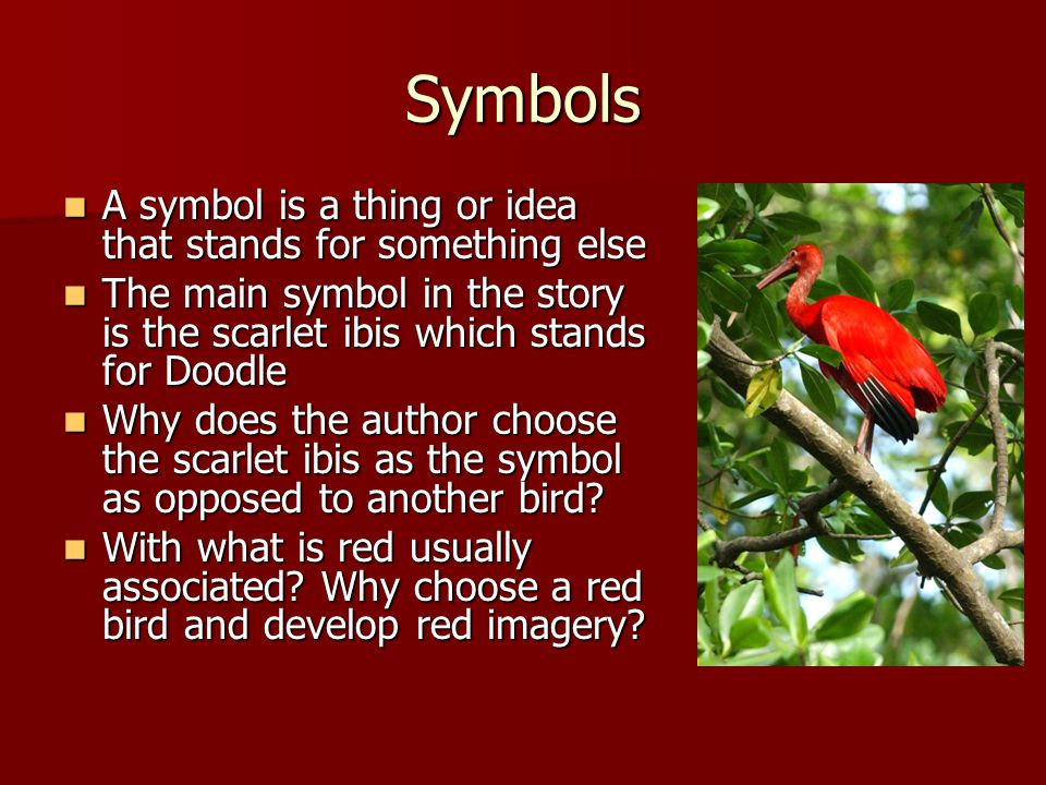 an analysis of doodle in the scarlet ibis by james hurst In the story the scarlet ibis by james hurst the narrator pushes his little brother far beyond his limit character analysis: doodle's brother.