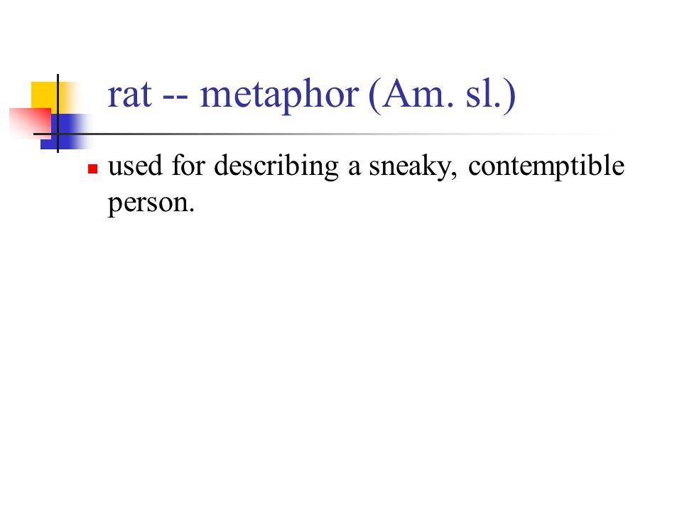 rat -- metaphor (Am. sl.) used for describing a sneaky, contemptible person.