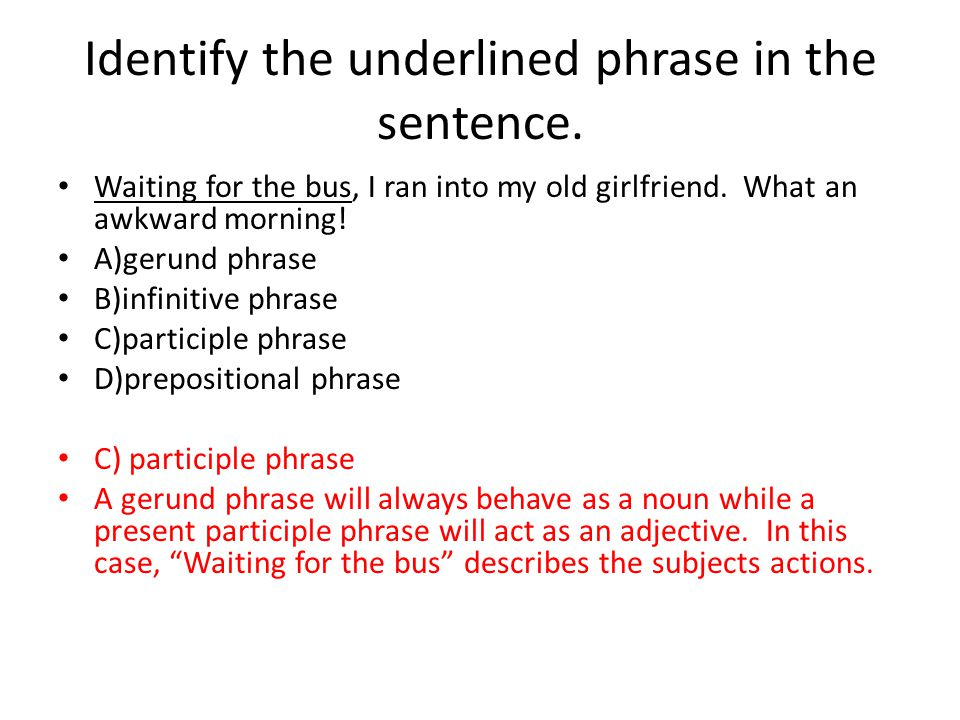 Identify the underlined phrase in the sentence.