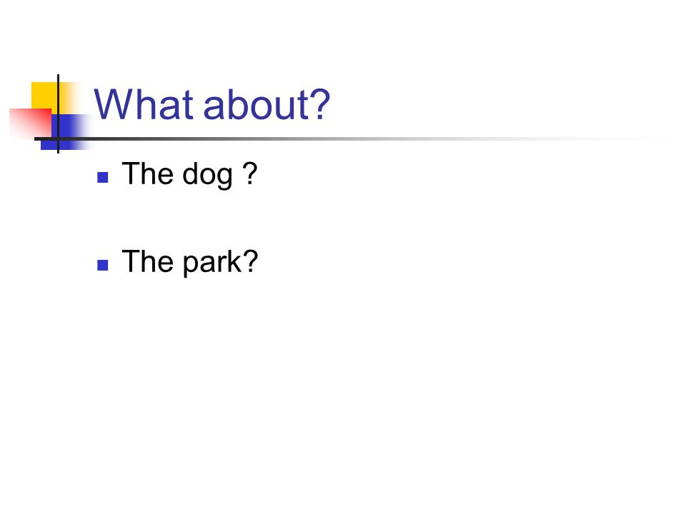 What about The dog The park