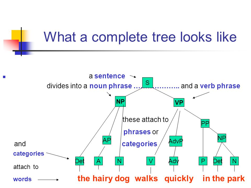What a complete tree looks like