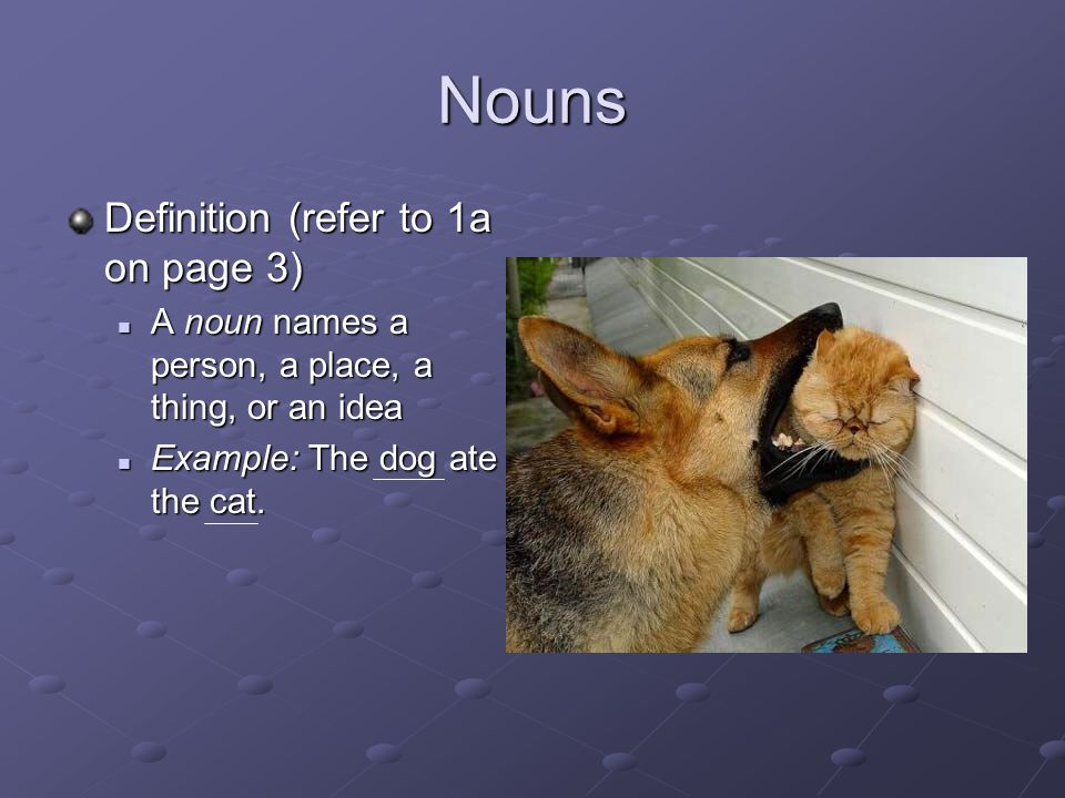 Nouns Definition (refer to 1a on page 3)