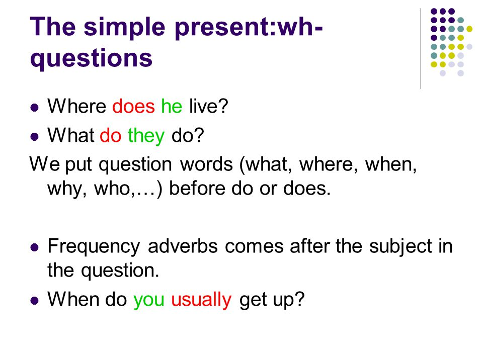 The simple present:wh- questions
