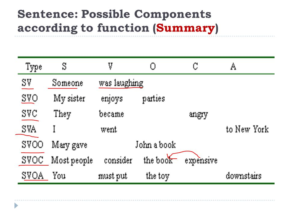 Sentence: Possible Components according to function (Summary)