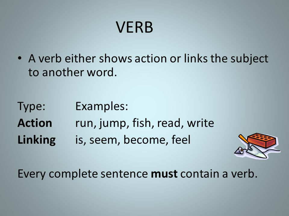 VERB A verb either shows action or links the subject to another word.