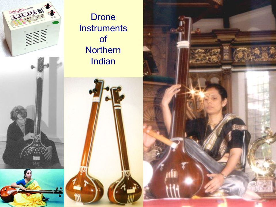 Drone Instruments of Northern Indian