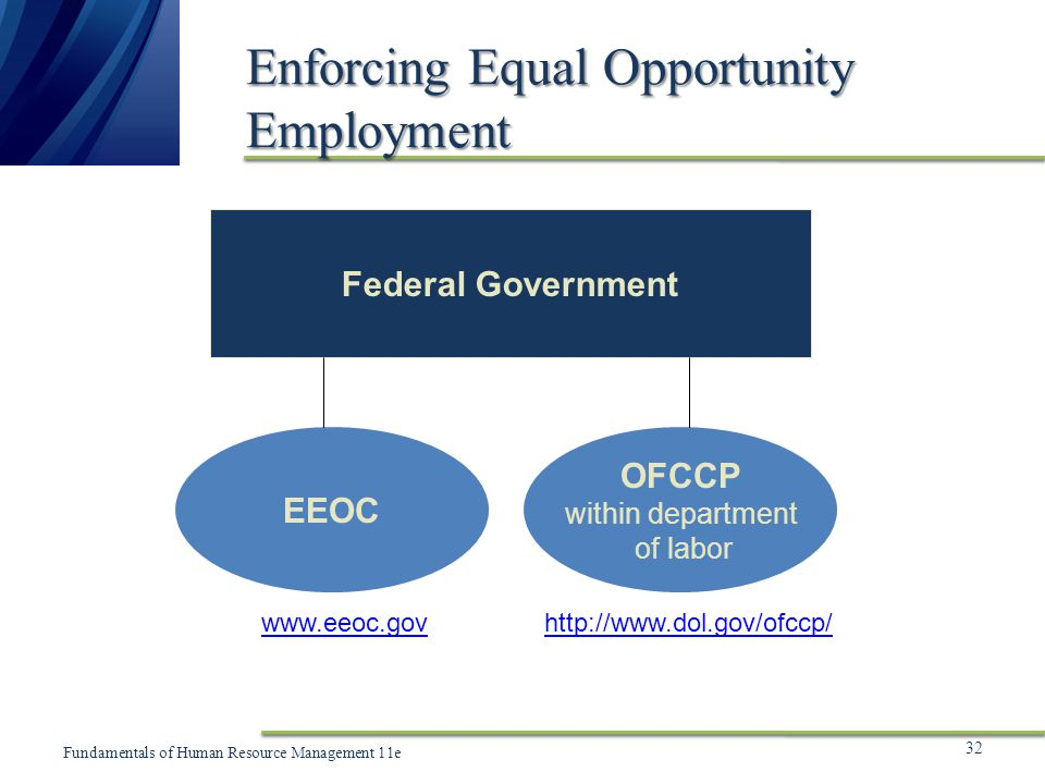 chapter 3 equal employment opportunity 3 chapter 2 how to use the eeo tabulation 2006-2010  3 chapter  1 introduction introduction the census bureau entered into a.