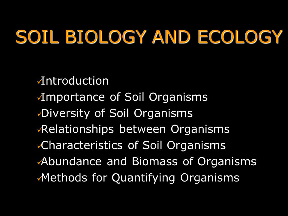 Soil biology and ecology ppt video online download for Introduction of soil