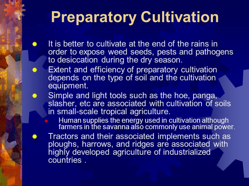 Preparatory Cultivation