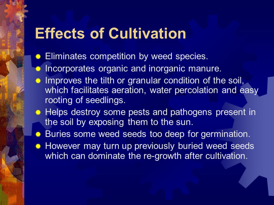 Effects of Cultivation