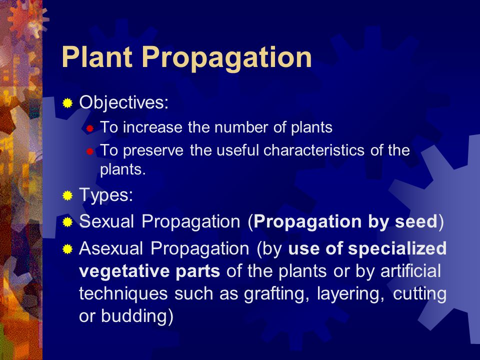 Plant Propagation Objectives: Types: