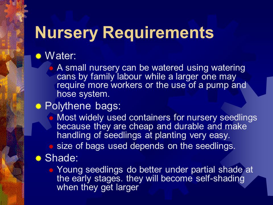 Nursery Requirements Water: Polythene bags: Shade: