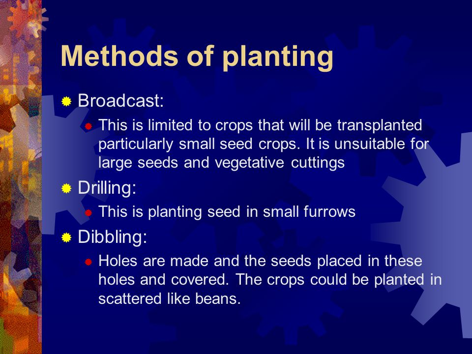 Methods of planting Broadcast: Drilling: Dibbling: